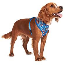 Hero Star Harness