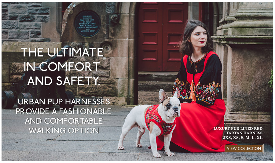 View Urban Pup Patterened Dog Harnesses