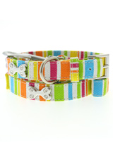 Striped Neon Canvas Diamante Bone Collar & Lead Set - A striped, bright and fun neon collar. Guaranteed to turn a grey day upside down! Finished in canvas with a stitched edge and features three chrome bones each inlaid with four diamante crystals. Matching striped neon canvas lead has silver clip and finished with a chrome bone inlaid with four diaman...