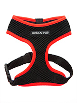 Active Mesh Neon Red Harness - Get fit, stay safe, stay seen. Treat your training buddy to an attractive new Active Mesh Harness with a dash of sporty neon to compliment your keep fit gear. But also great for regular walkies.<br /><br />High visibility Active Mesh Neon Harnesses provide the ultimate in comfort and safety, featuri...