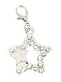 Double Star Swarovski Dog Collar Charm