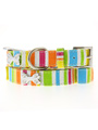 Striped Neon Canvas Diamante Bone Collar & Lead Set