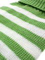 Green & White Candy Stripe Sweater