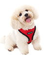 Cherry Red Soft Harness