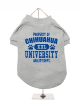 ''Property Of Chihuahua University'' Dog T-Shirt