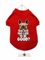 ''Christmas: Is It Too Late To Be Good?'' Dog T-Shirt